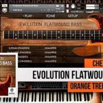 Orange Tree Samples — Evolution Flatwound Bass