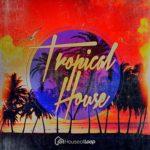 House Of Loop - Tropical House
