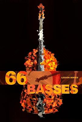 8dio - Legion Series: 66 Bass Ensemble (KONTAKT)